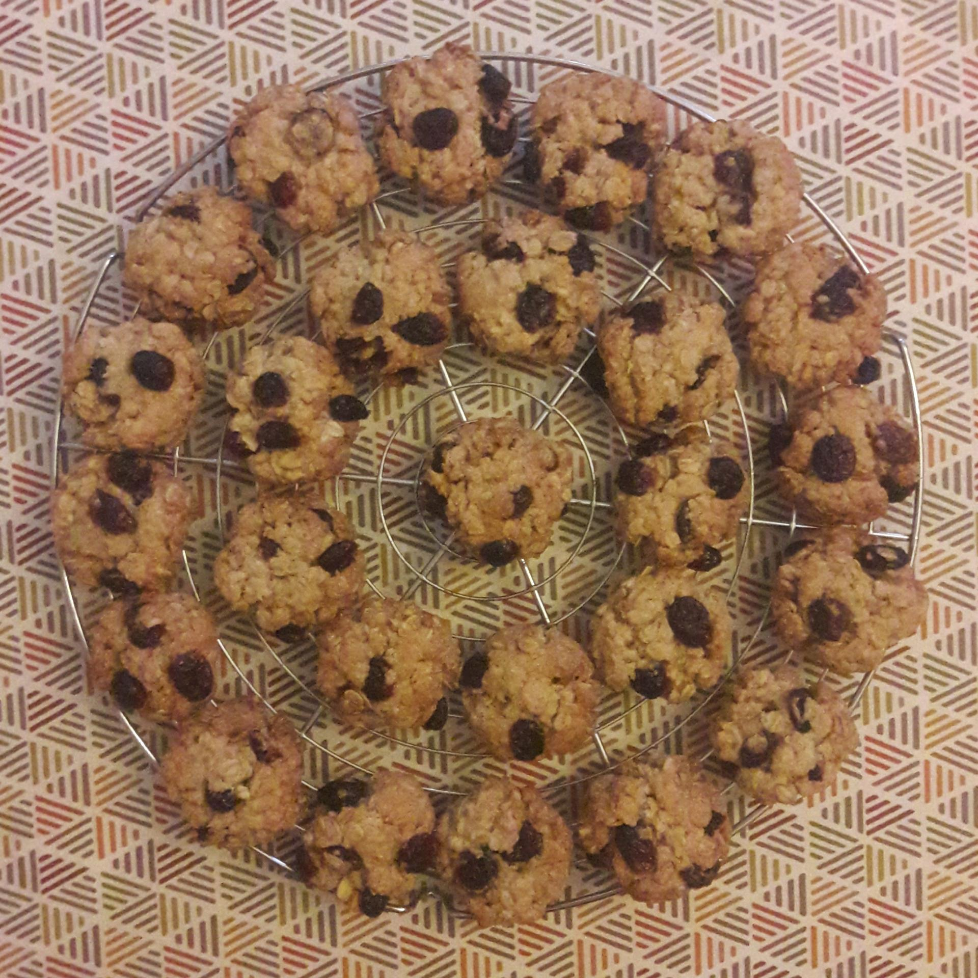 20210910 oat biscuits 1